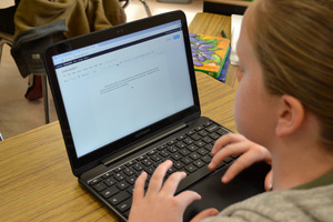 Want to Know More about Chromebooks at Wyandotte Academy?