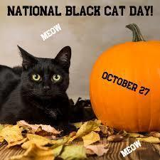Happy National Black Cat Day!