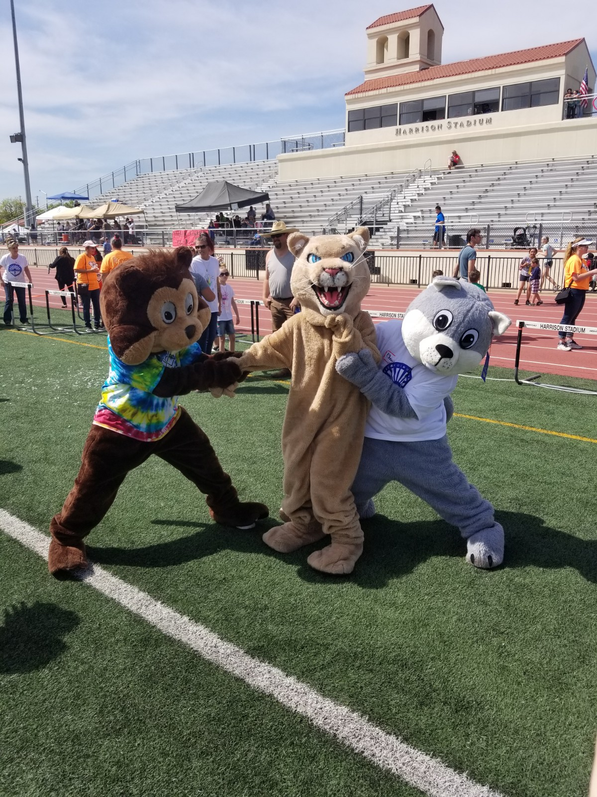 Our Mascot being persuaded to race the other mascots.